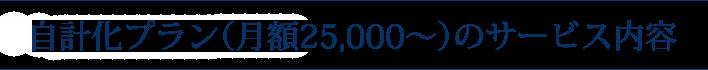 自計化プラン(月額25,000~)のサービス内容