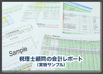 税理士顧問の会計レポート